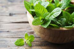 Minze pflanzen: Minzblätter in Schale
