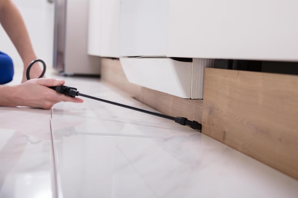 kakerlaken bek mpfen die besten tipps. Black Bedroom Furniture Sets. Home Design Ideas
