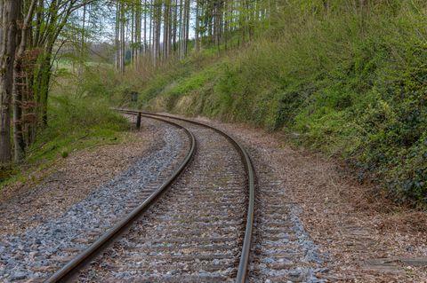 Deutsche Bahn versprüht jedes Jahr tonnenweise Glyphosat