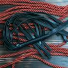 Mainz: Ein rotes Seil zum Fesseln und eine schwarze Lederpeitsche für SM-Spiele