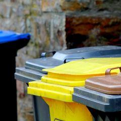 Maden in der Mülltonne: Mülltonnen