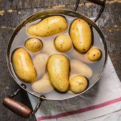 Kartoffeln kochen: Kartoffeln in einem Topf
