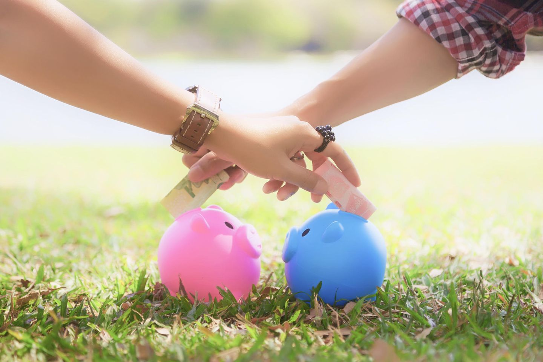 Mit Geld umgehen: zwei Sparschweine auf einem Rasen