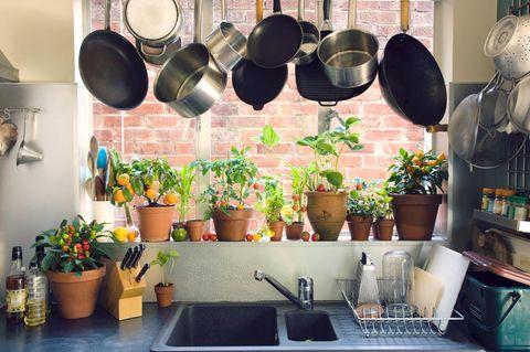 Einrichtungsfehler in der Küche
