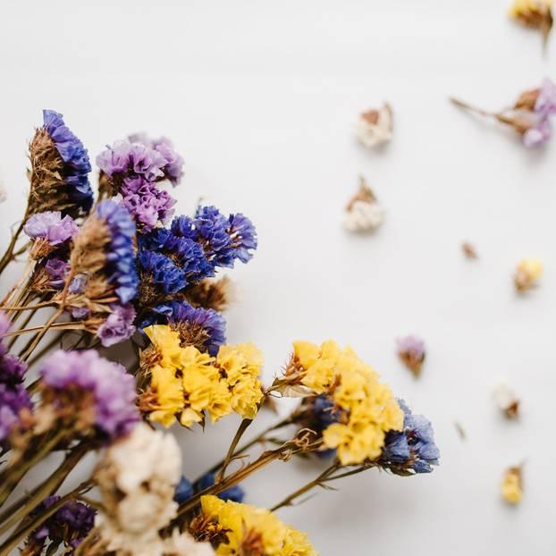 Atemberaubend Blumen trocknen – so einfach geht's | BRIGITTE.de #HF_97