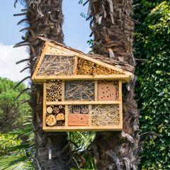 Insektenhotel selber bauen: Fertiges Hotel für Bienen und Co