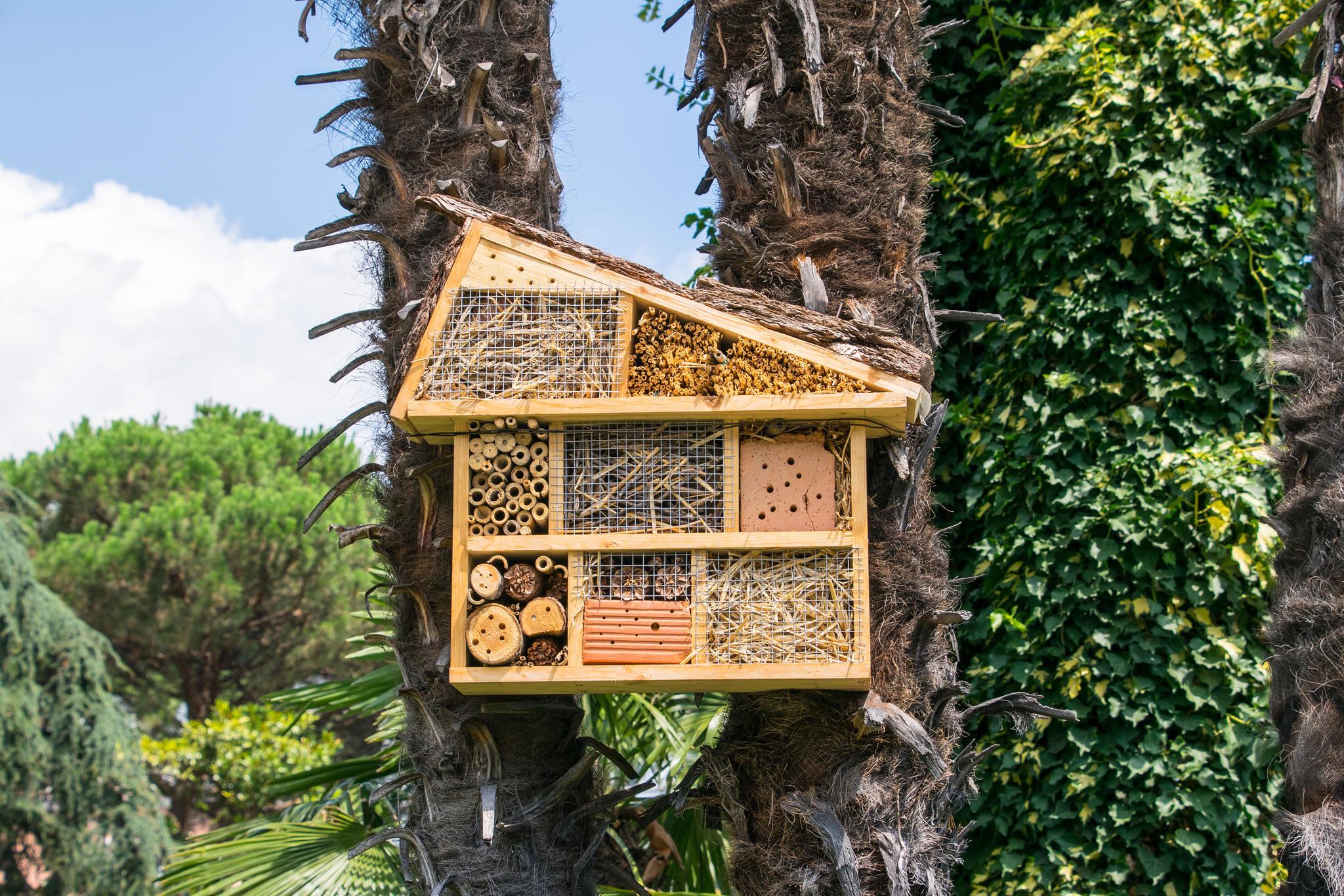 insektenhotel selber bauen - so einfach geht's | brigitte.de