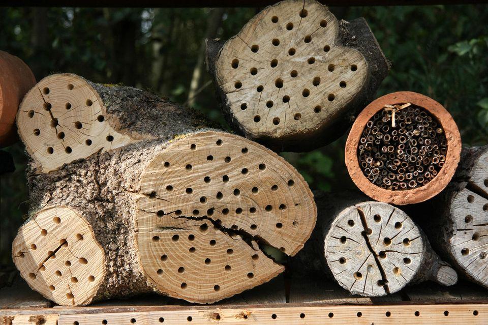 Einfaches Insektenhotel aus angebohrten Baumstämmen