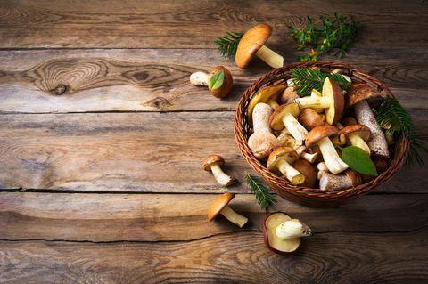 Pilze sammeln: Pilze in einem Korb