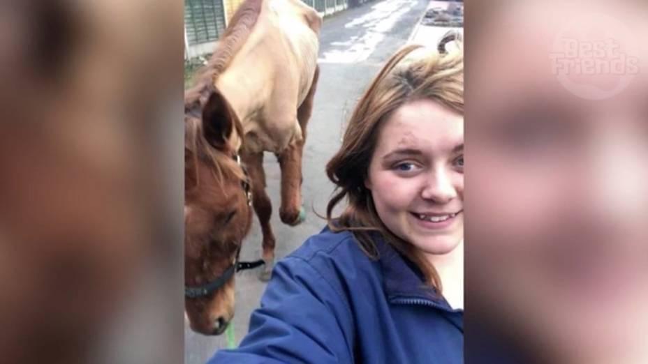 Pferde-Selfie führt zu Verurteilung