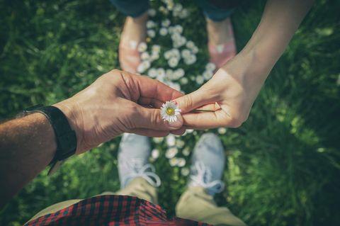 Zeichen der Liebe: Ein Mann und eine Frau halten zusammen ein Gänseblümchen fest