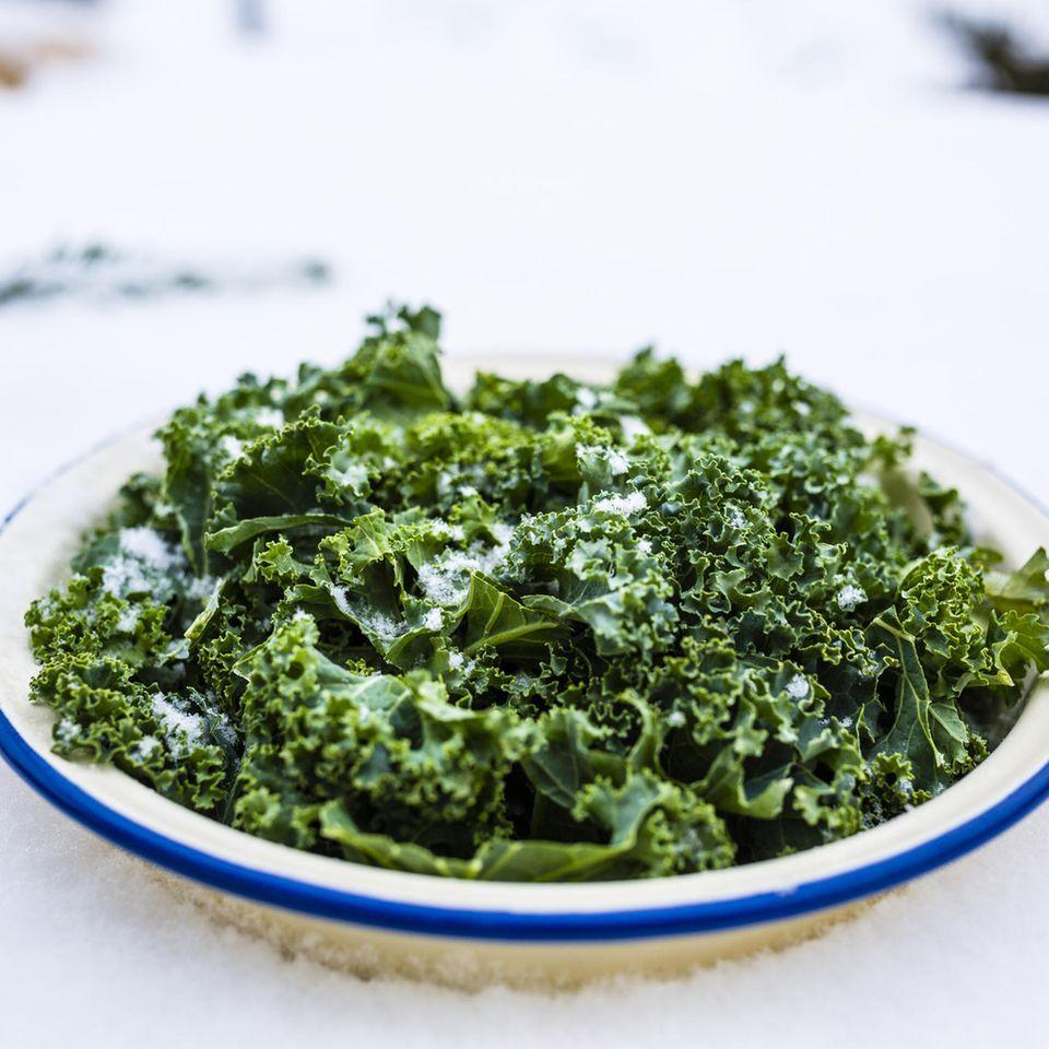 Grünkohl einfrieren – gefrorener Grünkohl auf dem Teller