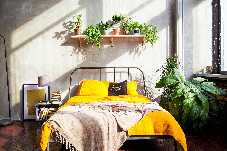 pflanzen im schlafzimmer darauf solltest du achten. Black Bedroom Furniture Sets. Home Design Ideas