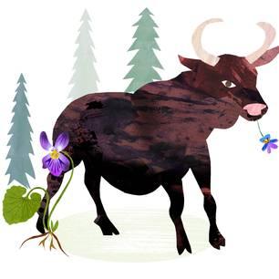 Jahreshoroskop Stier: Gemalter Stier