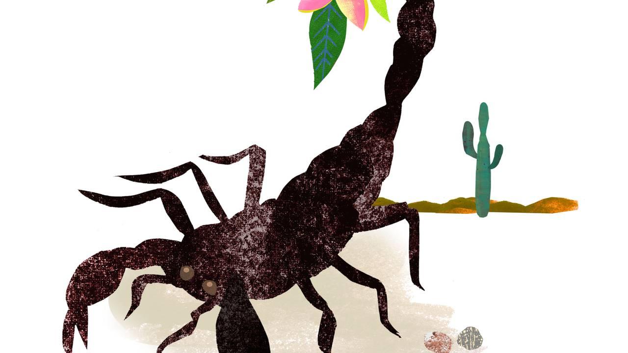 fische mann skorpion frau im bett