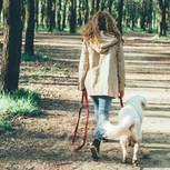 Gesund durchs Gehen: Frau geht mit Hund spazieren