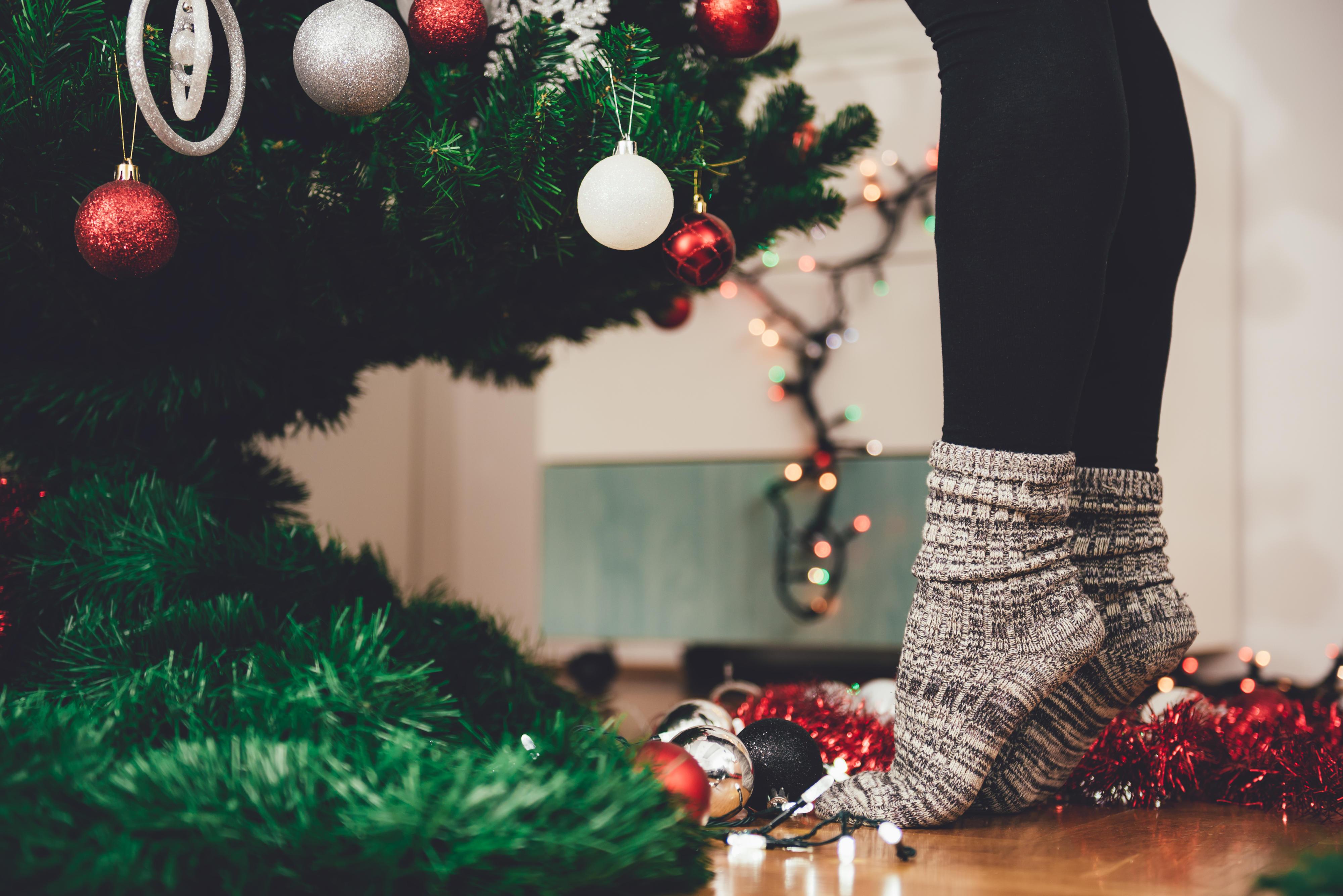 Power Tanne So Hält Euer Weihnachtsbaum Fast Ewig Brigittede