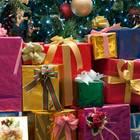 Geschenke-Wahnsinn für Kinder: Immer von allem zu viel! Viele Geschenke unter dem Weihnachtsbaum