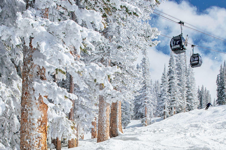 Skifahren Aspen: Skilift fährt durch zugeschneite Tannen
