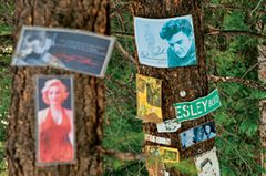 Skifahren Aspen: Baum mit vielen Aufklebern von alten Stars