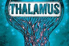 Literaturempfehlung: Thalamus