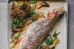 Lachs-Forelle mit Austernpilzsalat