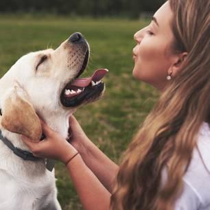 Hunde lieben Babysprache beweist eine Studie: Frau spricht knuddelnd mit Hund