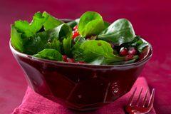 Blattsalat mit Granatapfel-Vinaigrette