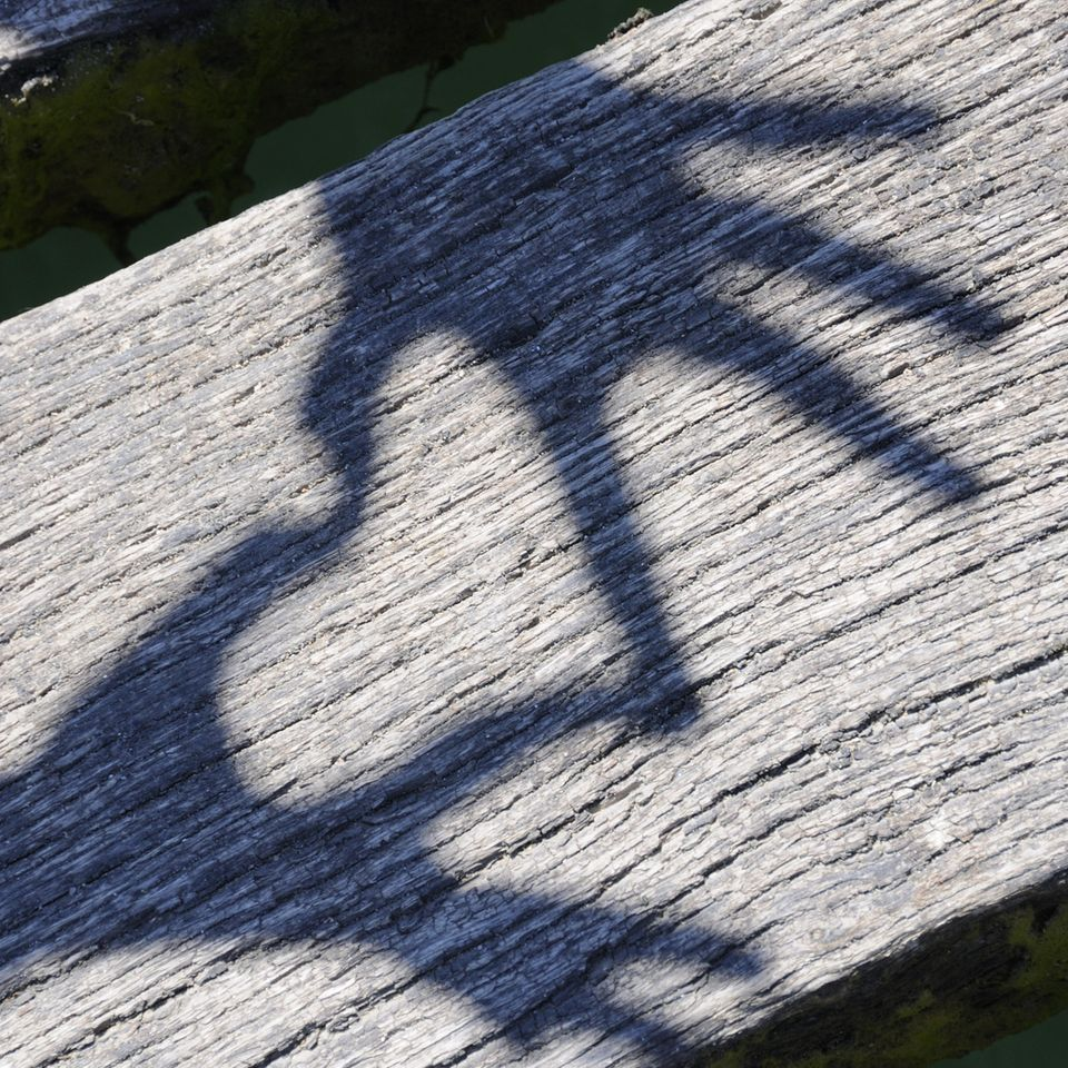 Karmische Liebe: Die Schatten zweier Hände formen ein Herz