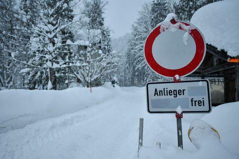 München: Junge von Schneebaum erschlagen