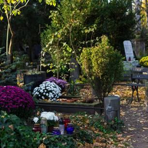 Grabbepflanzung: Bepflanztes Grab auf Friedhof