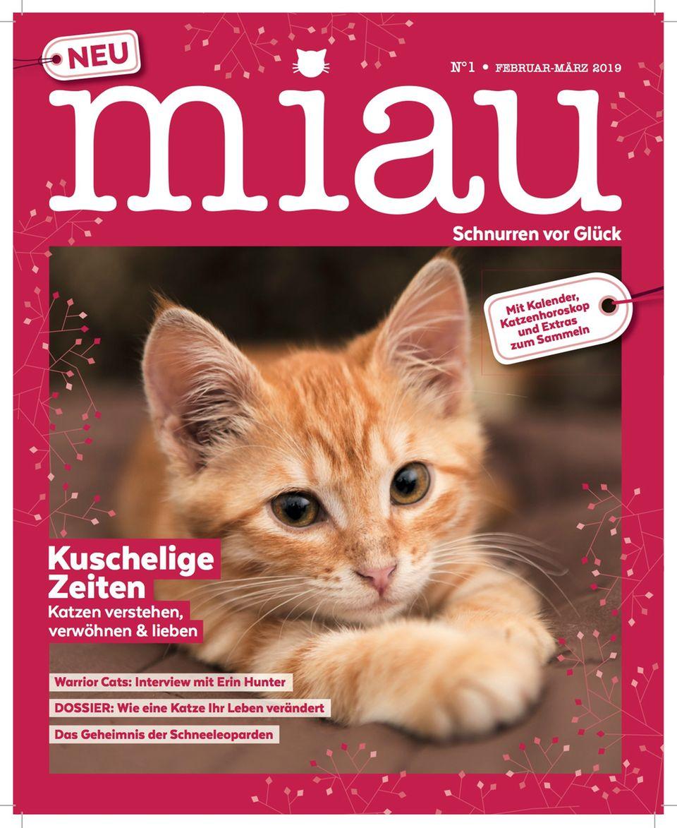 Das Katzenhoroskop: Das Cover des neuen Magazins Miau