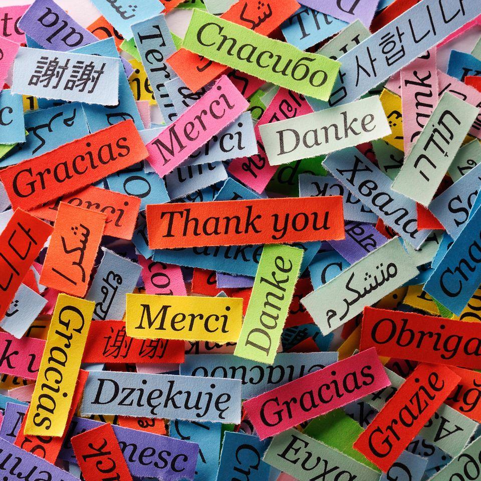 Welche Sprache lernen: Wörter in vielen Sprachen