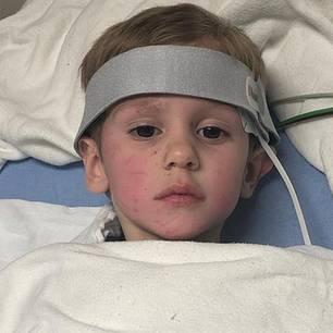 Dreijähriger verschwindet zwei Tage im Wald - und kehrt mit unfassbarer Geschichte zurück