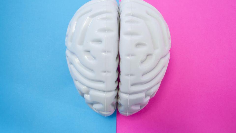 Forscher decken auf: Der Grund, warum Gehirne von Frauen langsamer altern