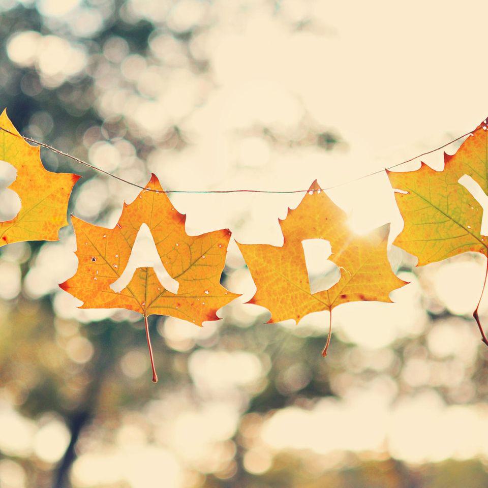 Twitter: Herbstlaub mit den Buchstaben BABY ausgestanzt