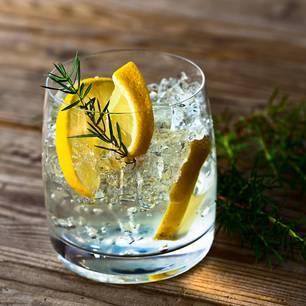 Intelligenz: Gin Tonic