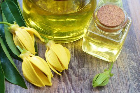 Ylang Ylang: Wirkung und Anwendung: Kleine Flasche gefüllt mit hellem Öl, daneben lieben Ylang Ylang Blüten