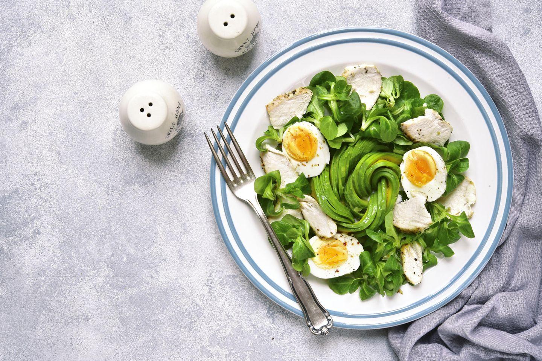 Protein-Diät-Menüs