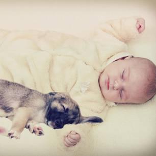 Mini-Farm--Effekt: Warum dein Kind mit vielen Tieren aufwachsen sollte
