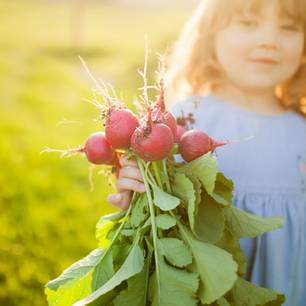 Radieschen pflanzen in 4 einfachen Schritten: Mädchen hält Bund mit frischen Radieschen in der Hand
