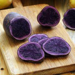 Alte Gemüsesorten: diese 7 solltest du kennen: Aufgeschnittene blaue Kartoffel