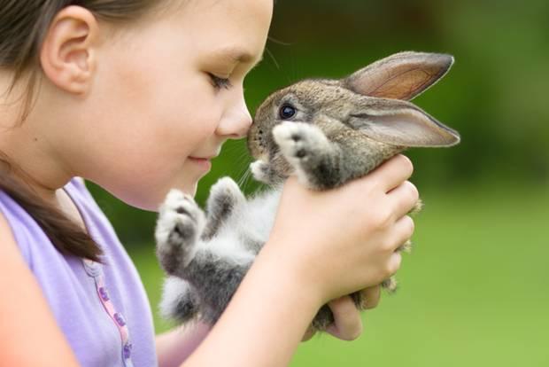 Haustiere für Kinder: Mädchen mit Kaninchen