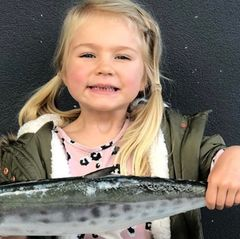 Paleo-Diät: Dieses Mädchen hat noch nie Zucker gegessen!