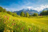Frühlingsziele: Österreich