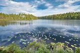 Frühlingsziele: Schweden