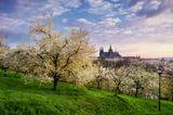 Frühlingsziele: Prag