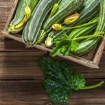 Zucchini pflanzen: Anleitung und Tipps: Zucchini mit Blüten in einer Holzkiste