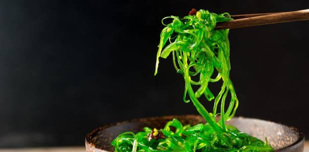 Algen: Das Wunderfutter aus dem Meer