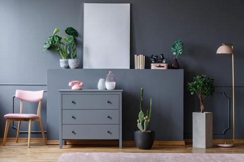 Zimmerpflanzen, die wenig Licht brauchen: Pflanzen auf einer Ablage und davor